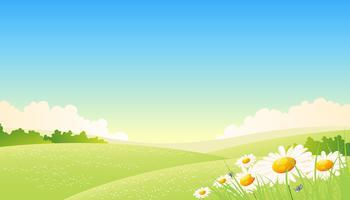Affiche des saisons de printemps ou d'été vecteur