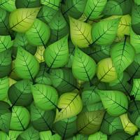 Fond de feuilles de printemps sans soudure vecteur