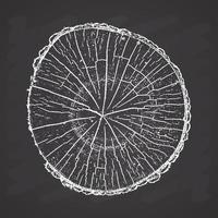 Journal de l'arbre, anneaux de croissance du bois grunge texture vector illustration