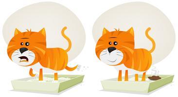 Litière pour chat, avant et après