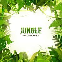 Fond de décoration tropicale jungle vecteur