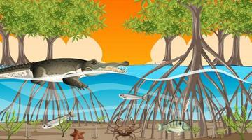 les animaux vivent dans la forêt de mangrove au coucher du soleil vecteur