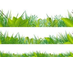 Jungle sans couture et végétation tropicale vecteur