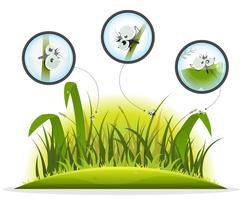 Caractère d'insecte drôle à l'intérieur de l'herbe de printemps vecteur