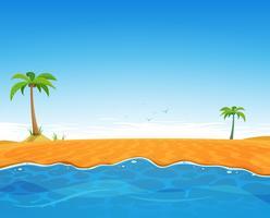Plage d'été tropicale
