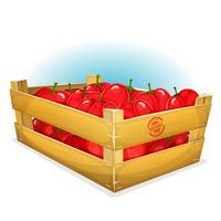 Caisse avec des tomates