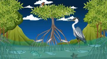 les animaux vivent dans la forêt de mangrove la nuit vecteur