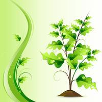 Arbre en croissance vecteur