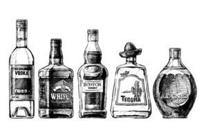 ensemble de vecteurs de bouteilles de bière vecteur