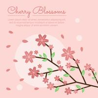 Vecteur Sakura Fleur De Cerisier