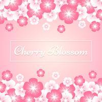 Fleurs Sakura Printemps Fleurs De Cerisier Sur Fond Rose vecteur