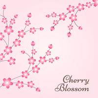 Fond de conception de printemps de fleurs de cerisier