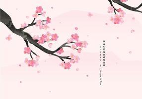 Cherry Blossoms Background Illustration vecteur