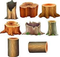 différents types d'illustration de tronc d'arbre vecteur