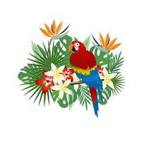 Fond tropical avec perroquet et feuilles tropicales