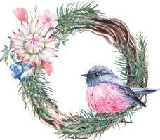 illustration de robin rose peinte à l'aquarelle vecteur