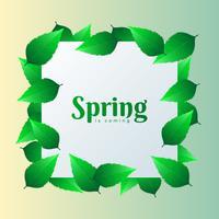 Élément carré design printemps avec fond de feuilles vertes vecteur