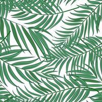 palmier, feuille, silhouette, seamless, modèle, fond, vecteur, illustration vecteur