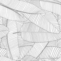 Beautifil palmier feuille silhouette transparente motif de fond illustration vectorielle vecteur