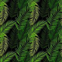 palmier, feuille, silhouette, seamless, modèle, fond vecteur