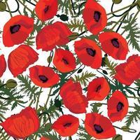 motif floral. fond transparent fleur de pavot. fleurir le jardin d'ornement vecteur