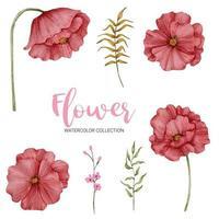 beaucoup de sortes de belles fleurs dans le style de couleur d'eau vecteur