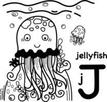Hand drawn.alphabet lettre j-jellyfish illustration, vecteur