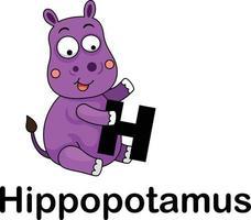 Lettre de l'alphabet h-hippopotame vector illustration