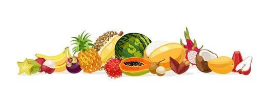 fruits thaïlandais. fruits de Thaïlande. banane, noix de coco, melon, pastèque, carambole, papaye, pomme rose, durian, litchi, mangue, mangoustan, fruits du dragon, ramboutan, ananas. illustration vectorielle vecteur