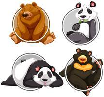 Ensemble de bannière d'ours différents