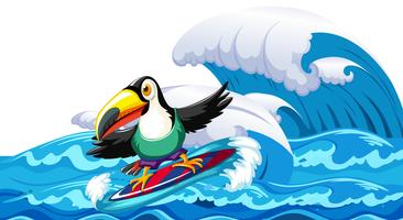 Toucan surfant sur la grosse vague vecteur