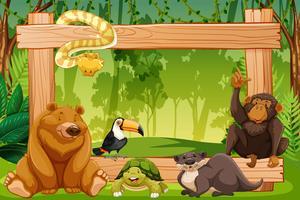 WIld animal sur cadre en bois vecteur