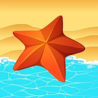 Star Fish sur la plage vecteur