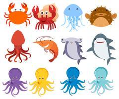 Créatures de la mer sur fond blanc vecteur