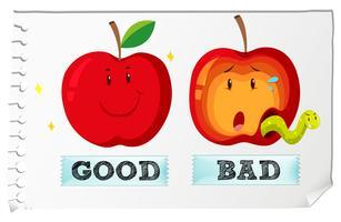 Adjectifs opposés bons et mauvais