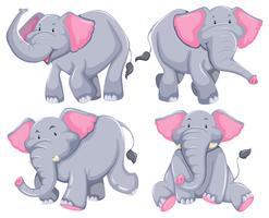 Éléphants vecteur