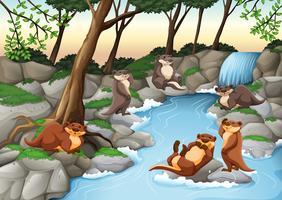 Castors vivant au bord de la rivière vecteur