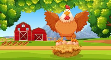 Poule à la ferme vecteur
