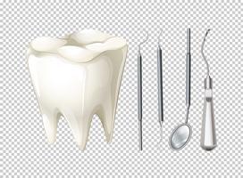 Dent et équipements dentaires vecteur