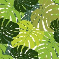 feuille de palmier sans soudure de fond illustration vectorielle eps10. vecteur