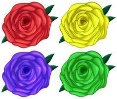 Quatre roses colorées vecteur
