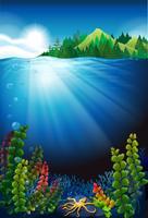 Scène sous l'eau et les montagnes