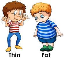 Une comparaison du corps d'un garçon