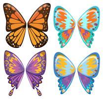 Modèle différent d'ailes de papillon
