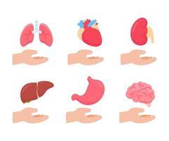 vecteur d'organes humains. concept de pièces internes du corps humain d'étude des systèmes corporels.