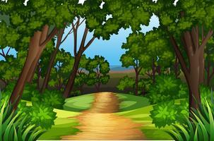 Un paysage de route nature vecteur