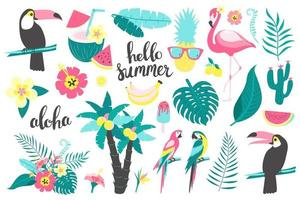 ensemble d'été de feuilles tropicales, flamants roses, toucan, perroquet. vecteur