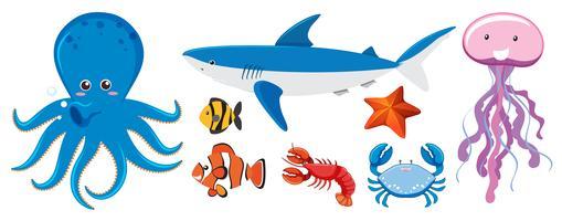 Un ensemble de créatures marines vecteur