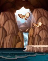 Grotte avec des cascades et des hiboux