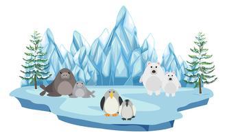 La faune dans les terres arctiques vecteur